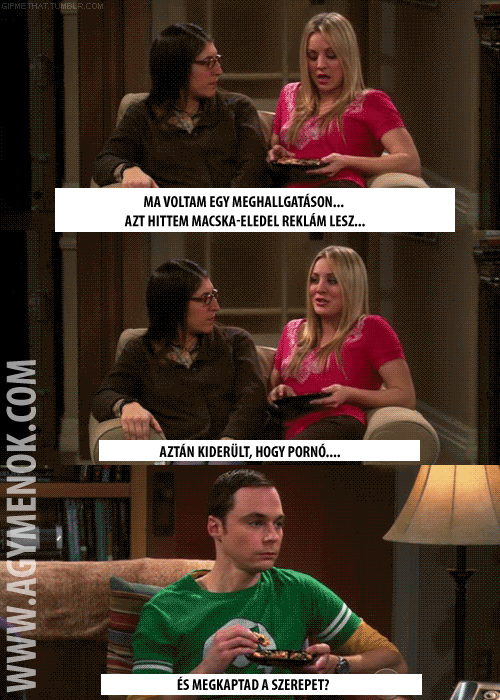 The overwatch Big bang theory Peny porno