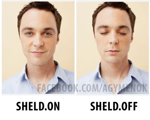 sheld-off-on